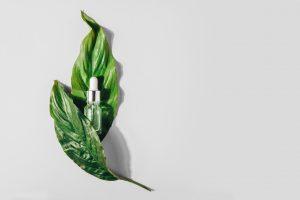 Dudas y falsos mitos de la cosmética - medicina estetica malaga